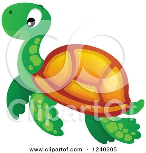 Essay on marine turtles